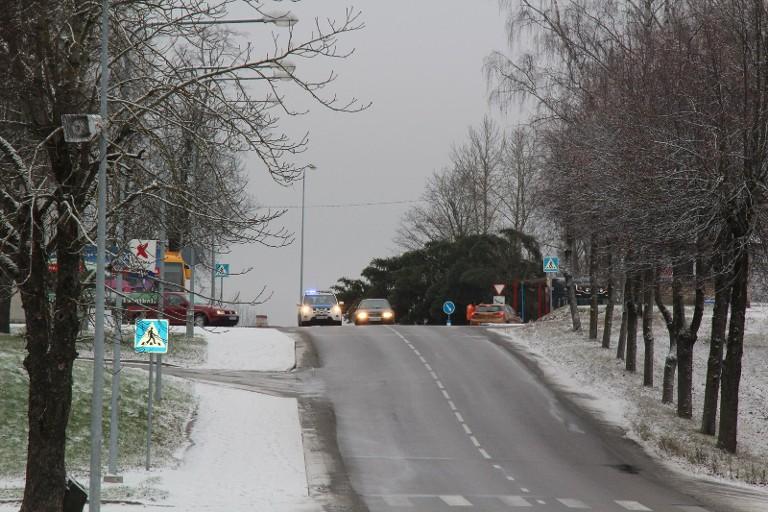 folder Jõulukuuse toomine Talvepealinna 24.11.2015